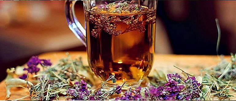 Чай для поджелудочной железы: что пить для лечения