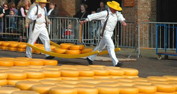 Сыр на продажу на сырный рынок в Алкмаре