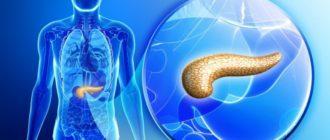 Функции поджелудочной железы